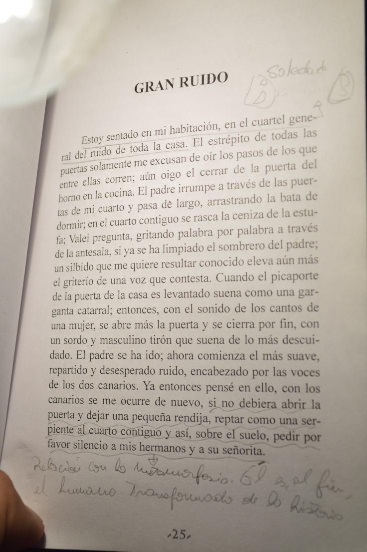 """El gran ruido"" de Franz Kafka."