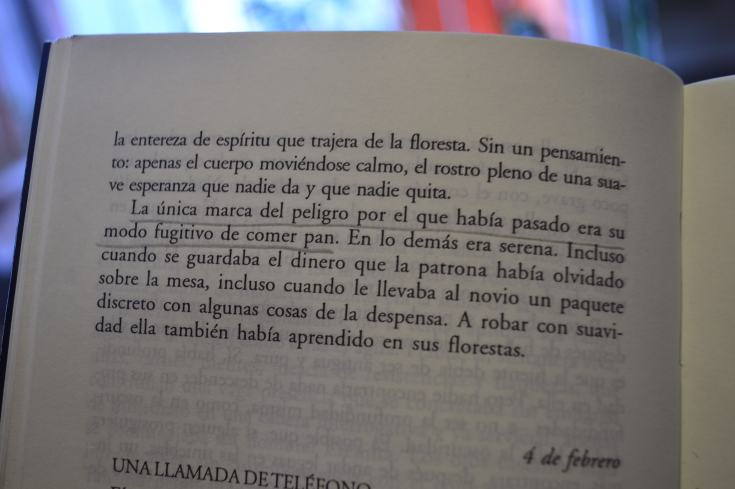 """""""Revelación de un mundo"""" de Clarice Lispecto (fragmento)"""