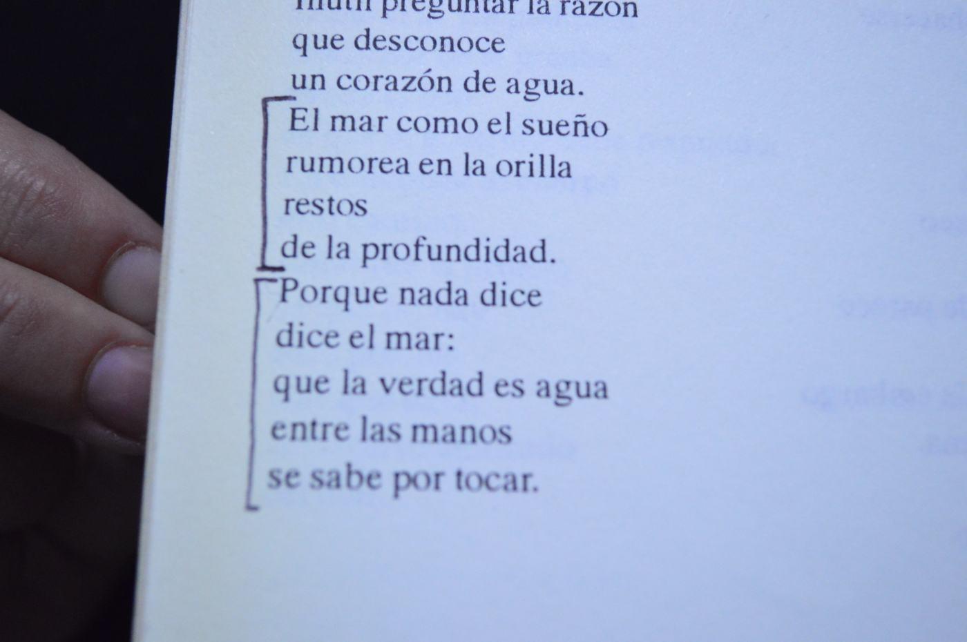 """Fragmento de """"Marea"""" de Susana Villalba en """"Caminatas""""."""